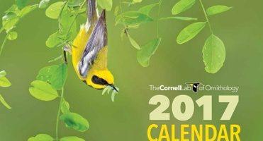 2017-Membership-Calendar_Cover-800px